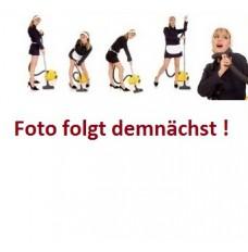 f Dirt Devil M 2012-5 Swiffy PLUS 4 Staubsaugerbeutel 1 Original AEG GR 50S